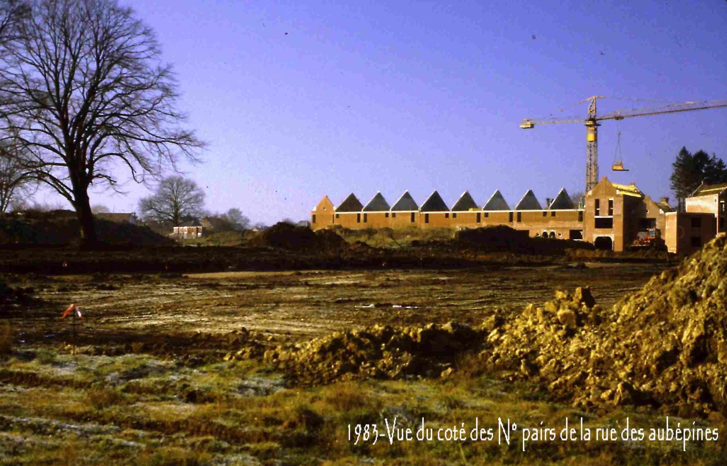 Famars-1983-Vue-coté-n°-pairs-de-la-rue-des-aubépines1