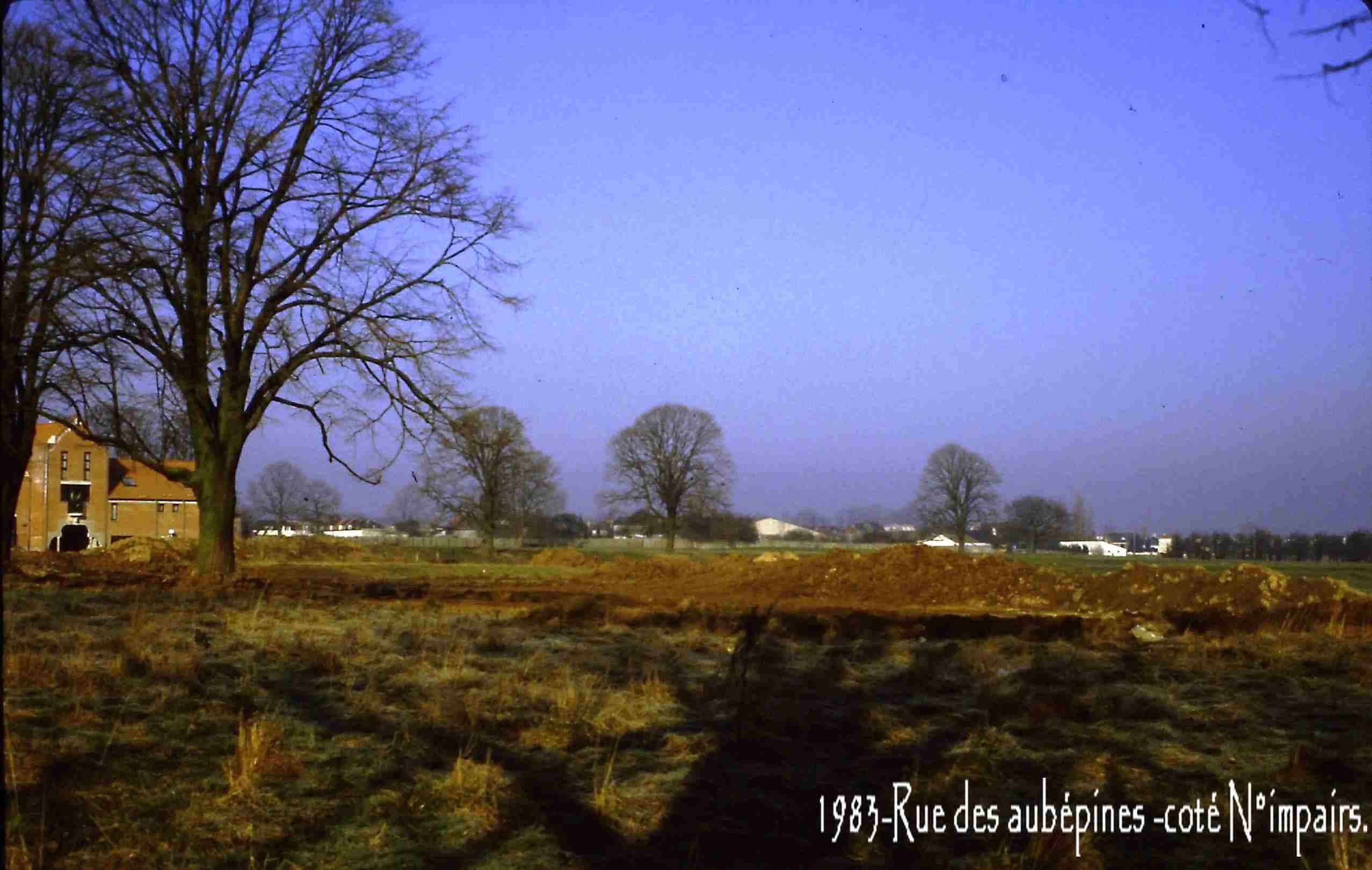 Famars-1983-rue-des-aubépines-coté-impair1