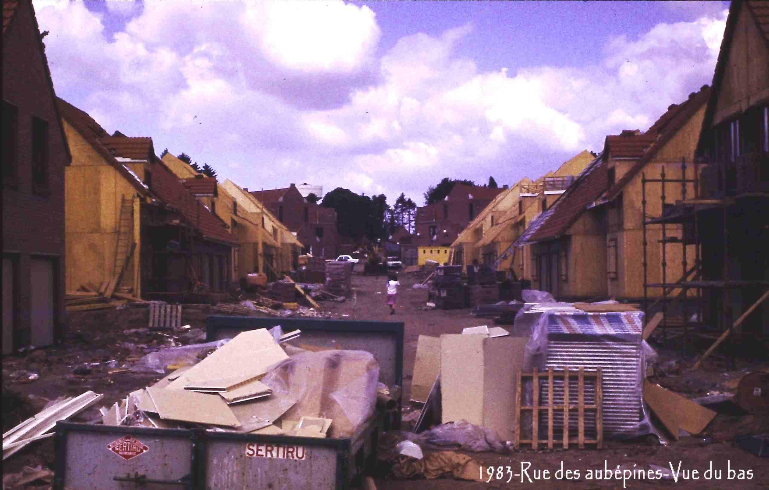 Famars-1983-rue-des-aubépines-vue-du-bas-11