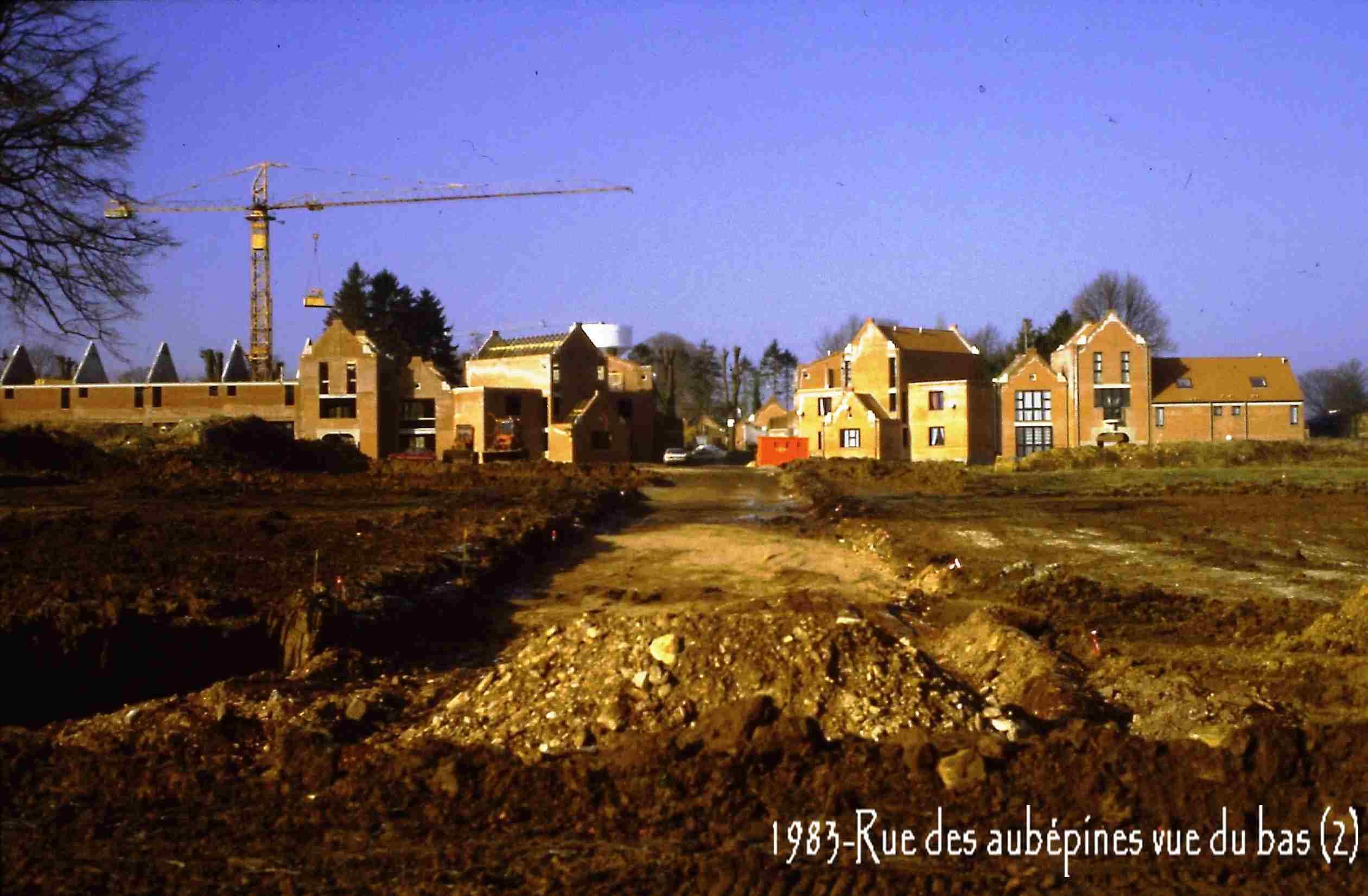 Famars-1983-rue-des-aubépines-vue-du-bas-21