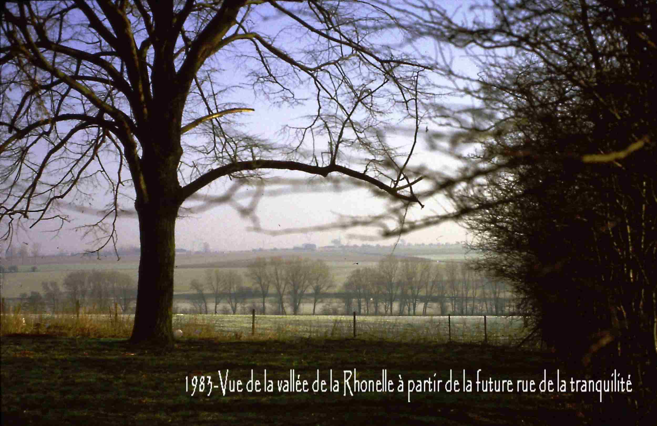 Famars-1983-vue-à-partir-de-la-future-rue-de-la-tranquilité1