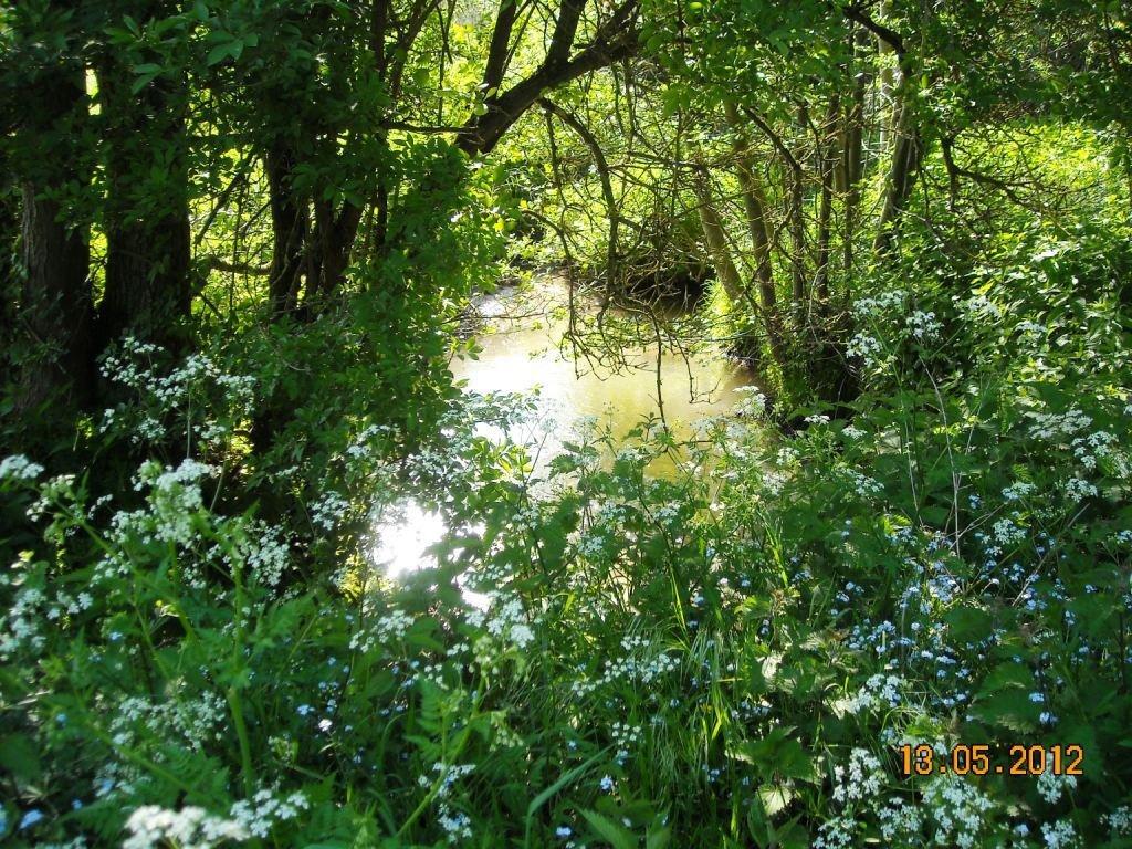 Famars-Le-ruisseau-de-Saméon