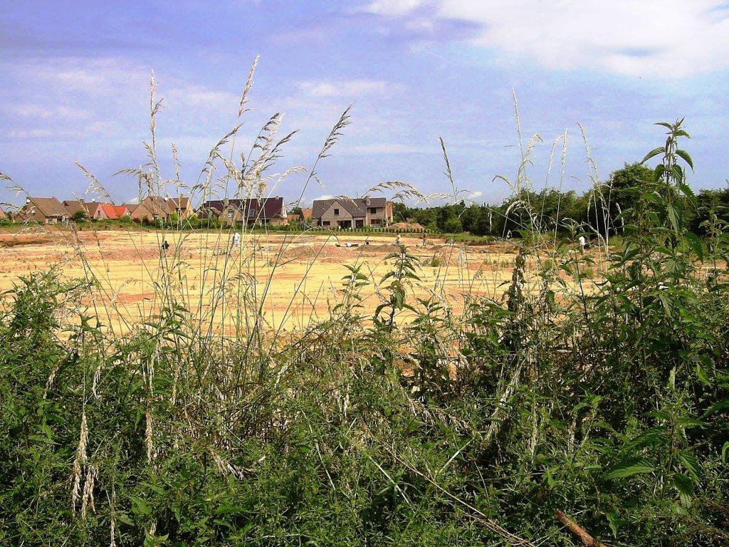 Famars-Zone-de-fouilles-vue-de-la-rue-des-aubépines