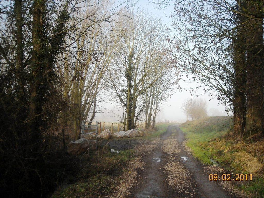 Famars_Chemin-de-Saméon-à-Artres